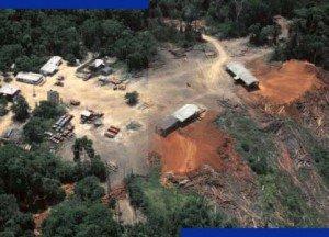 Déforestation de la forêt amazonienne. Photo Divulgação/Greenpeace Brasil